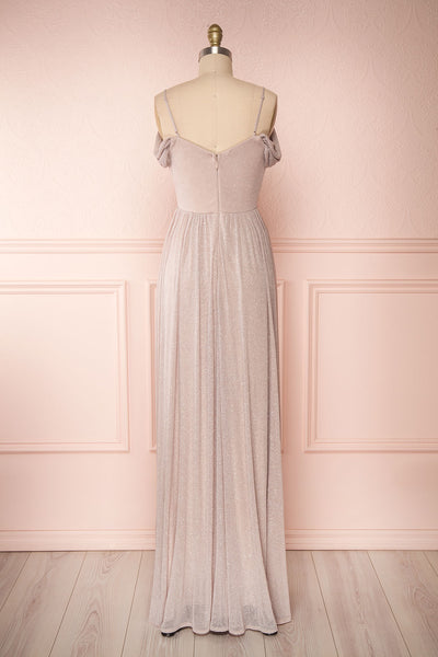 Cephee Taupe Glitter Dress | Robe | Boutique 1861 back view