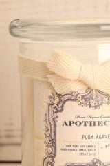 Chandelle Plum Agave -Perfumed candle in a jar