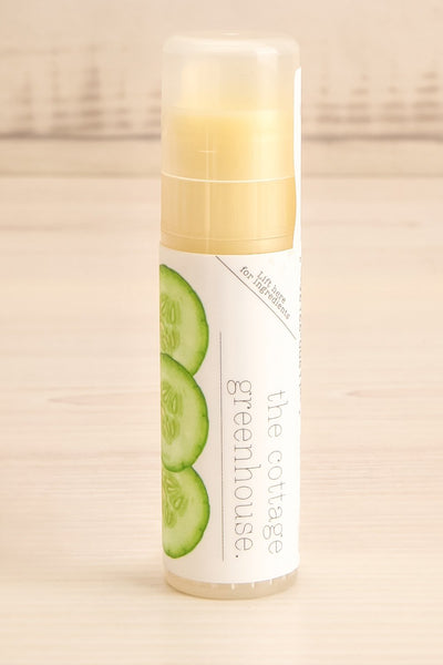 Cucumber & Honey Lip Balm | La Petite Garçonne Chpt. 2 close-up