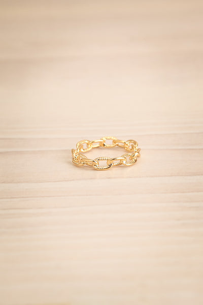 Czaplinek Or Fine Chain Links Textured Ring flat view | La Petite Garçonne