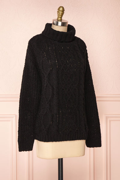 Irma Black Turtleneck Knit Sweater | La petite garçonne side view