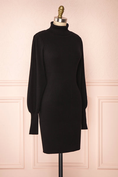 Janick Black Ribbed Turtleneck Fitted Dress | Boutique 1861 side view