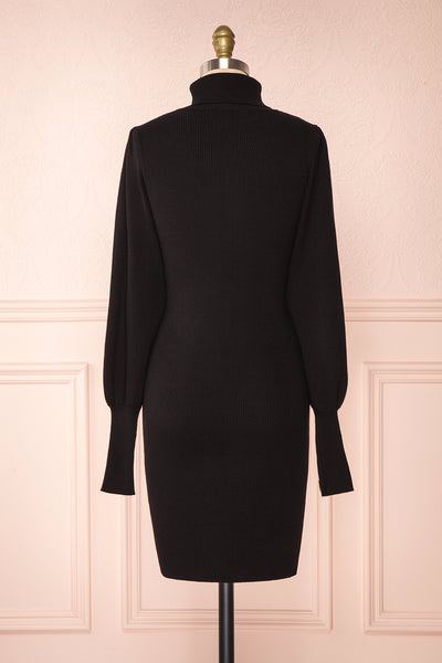 Janick Black Ribbed Turtleneck Fitted Dress | Boutique 1861 back view