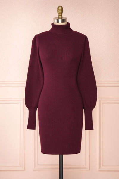Janick Burgundy Ribbed Turtleneck Fitted Dress | Boutique 1861 front view