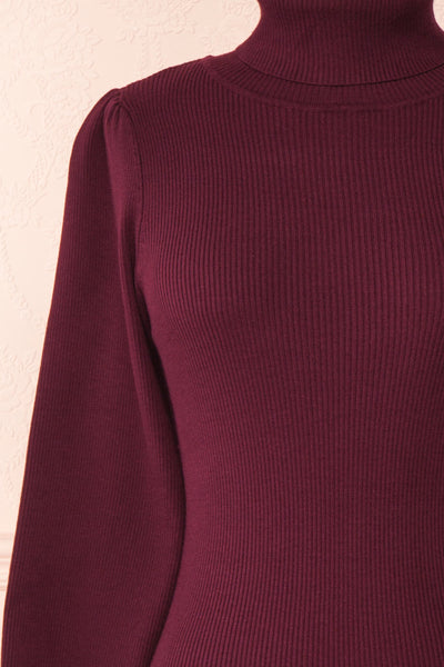 Janick Burgundy Ribbed Turtleneck Fitted Dress | Boutique 1861 front close-up