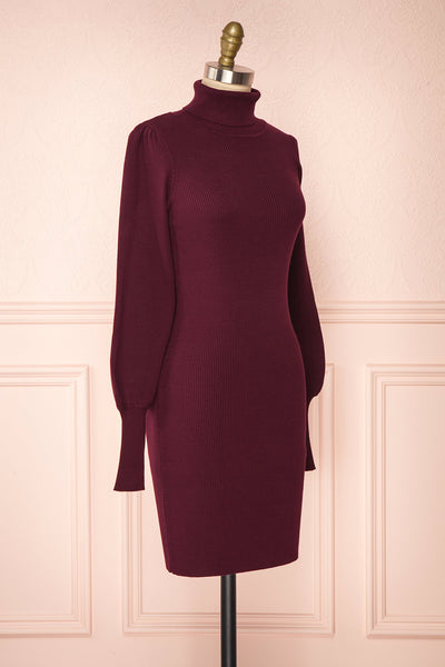 Janick Burgundy Ribbed Turtleneck Fitted Dress | Boutique 1861 side view