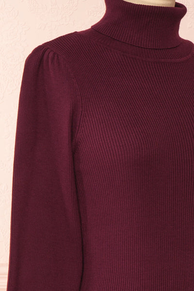 Janick Burgundy Ribbed Turtleneck Fitted Dress | Boutique 1861 side close-up