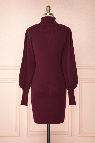 Janick Burgundy Ribbed Turtleneck Fitted Dress | Boutique 1861 back view