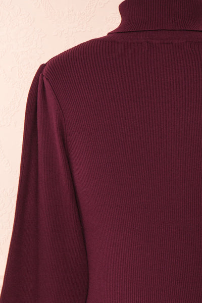 Janick Burgundy Ribbed Turtleneck Fitted Dress | Boutique 1861 back close-up