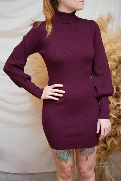 Janick Burgundy Ribbed Turtleneck Fitted Dress | Boutique 1861 model