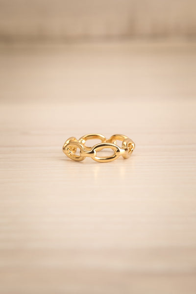 Kietrz Or Fine Chain Links Textured Golden Ring flat view | La Petite Garçonne