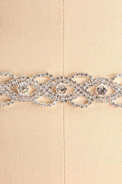 Leslie Silver Crystal Belt | Boudoir 1861 close-up