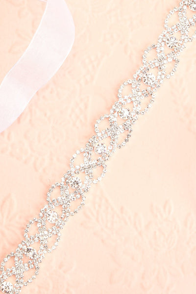 Leslie Silver Crystal Belt | Boudoir 1861 flat close-up
