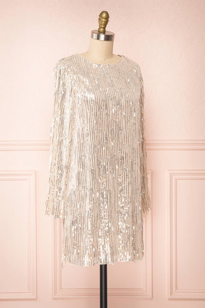 Lobelia Beige Long Sleeve Sequin Dress | Boutique 1861 side view
