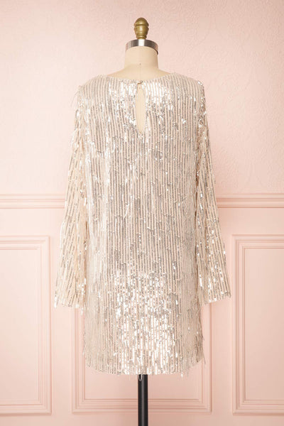 Lobelia Beige Long Sleeve Sequin Dress | Boutique 1861 back view