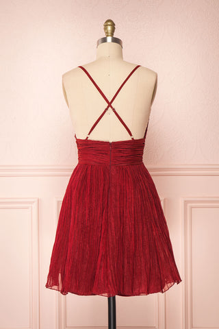 Lucetta Burgundy Pleated Short A-Line Party Dress  | BACK VIEW | Boutique 1861