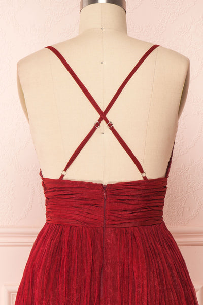 Lucetta Burgundy Pleated Short A-Line Party Dress  | BACK CLOSE UP | Boutique 1861