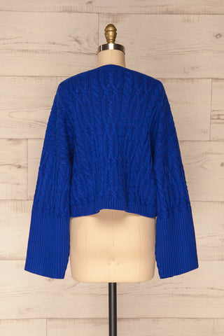 Pertosa Royal Blue Batwing Sleeves Sweater | La Petite Garçonne back view