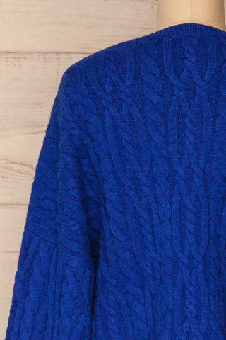 Pertosa Royal Blue Batwing Sleeves Sweater | La Petite Garçonne back close-up