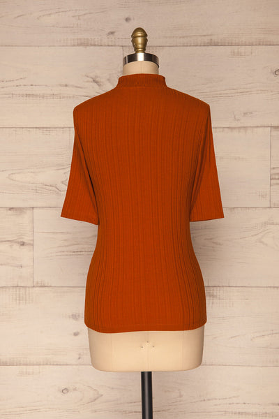 Pieszyce Rust Orange Mock Neck Top back view | La petite garçonne