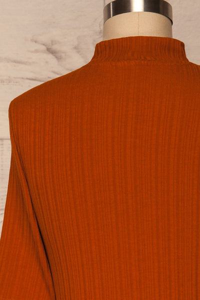 Pieszyce Rust Orange Mock Neck Top back close up | La petite garçonne