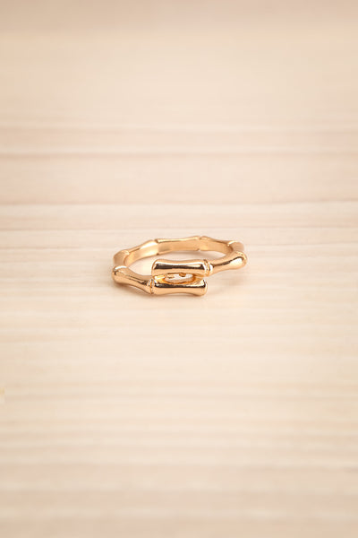 Rubrum Or Fine Textured Golden Ring flat view | La Petite Garçonne