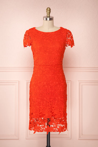 Sierramai Red Lace Fitted Cocktail Dress | Boutique 1861