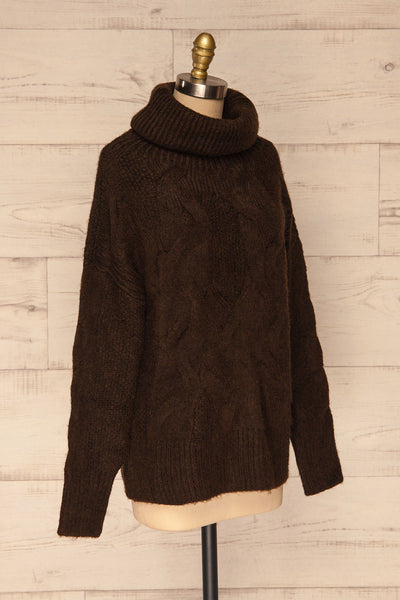 Vigo Brown Turtleneck Knit Sweater | La petite garçonne side view