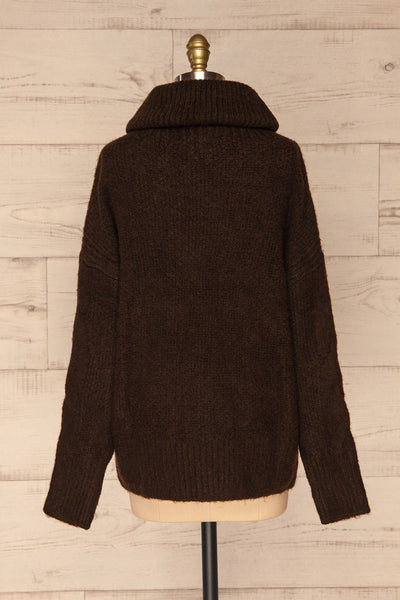Vigo Brown Turtleneck Knit Sweater | La petite garçonne back view