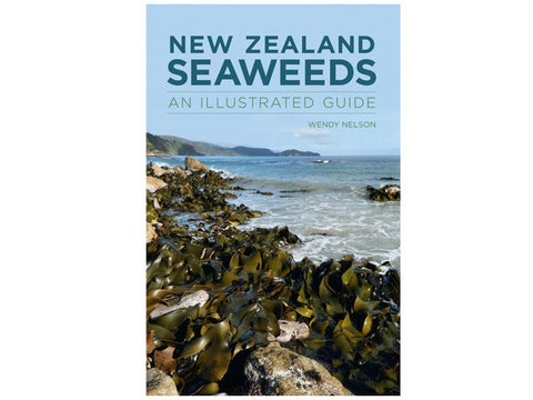 New Zealand Seaweeds An Illustrated Guide