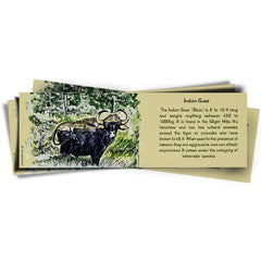 Indian Wildlife Souvenir, Bison Bookmark