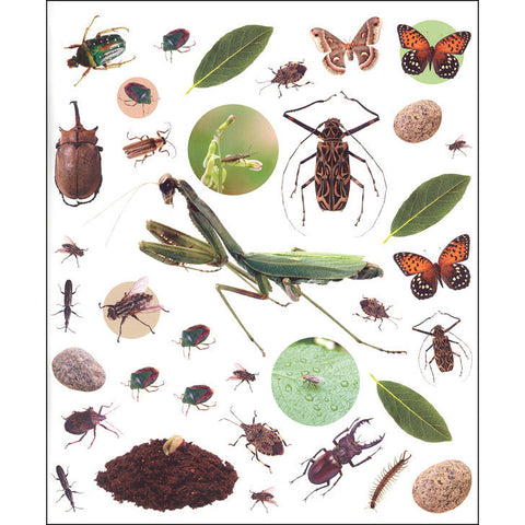 Eyelike Bugs sticker book-arts & crafts-Thomas Allen-Dilly Dally Kids