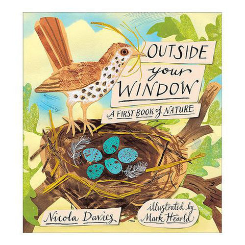 Outside Your Window-books-Penguin Random House-Dilly Dally Kids