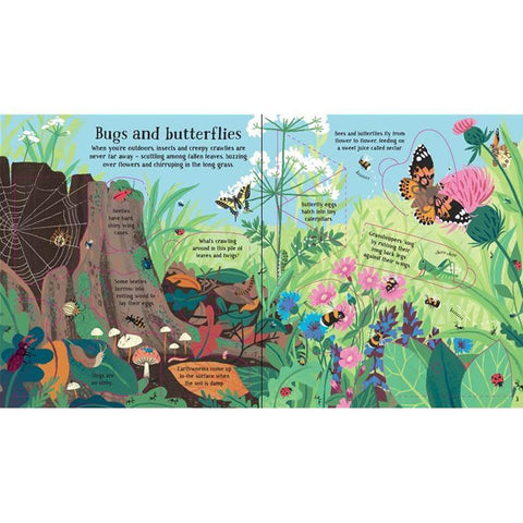 usborne look inside nature