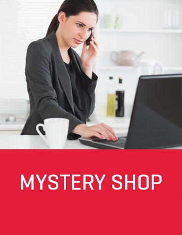 Internet E-Lead Automotive Mystery Shop