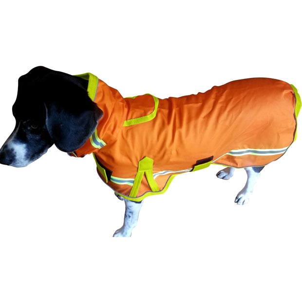 Petsafe Jacket