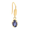 Lustrous Claw Set Oval Iolite Hook Earrings