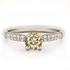 Four Claw Pave Diamond Engagement Ring