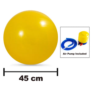 Anti-Burst Stability Ball (EFISP)