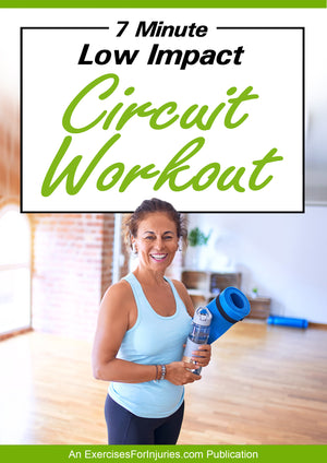 7 Minute Low Impact Circuit Workout - Digital Download (EFISP)