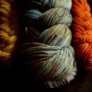 Sock Kit: Autumn Wind 1