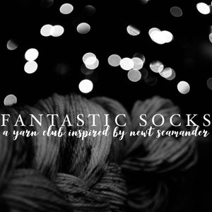 Fantastic Socks: a yarn club inspired by Newt Scamander (1-month auto-renew)