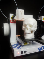 3D Printered Skull on the Up Plus 2