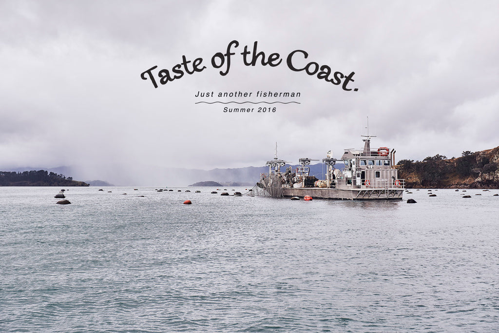 TASTE OF THE COAST ~ J.A.F SUMMER 16 CAMPAIGN