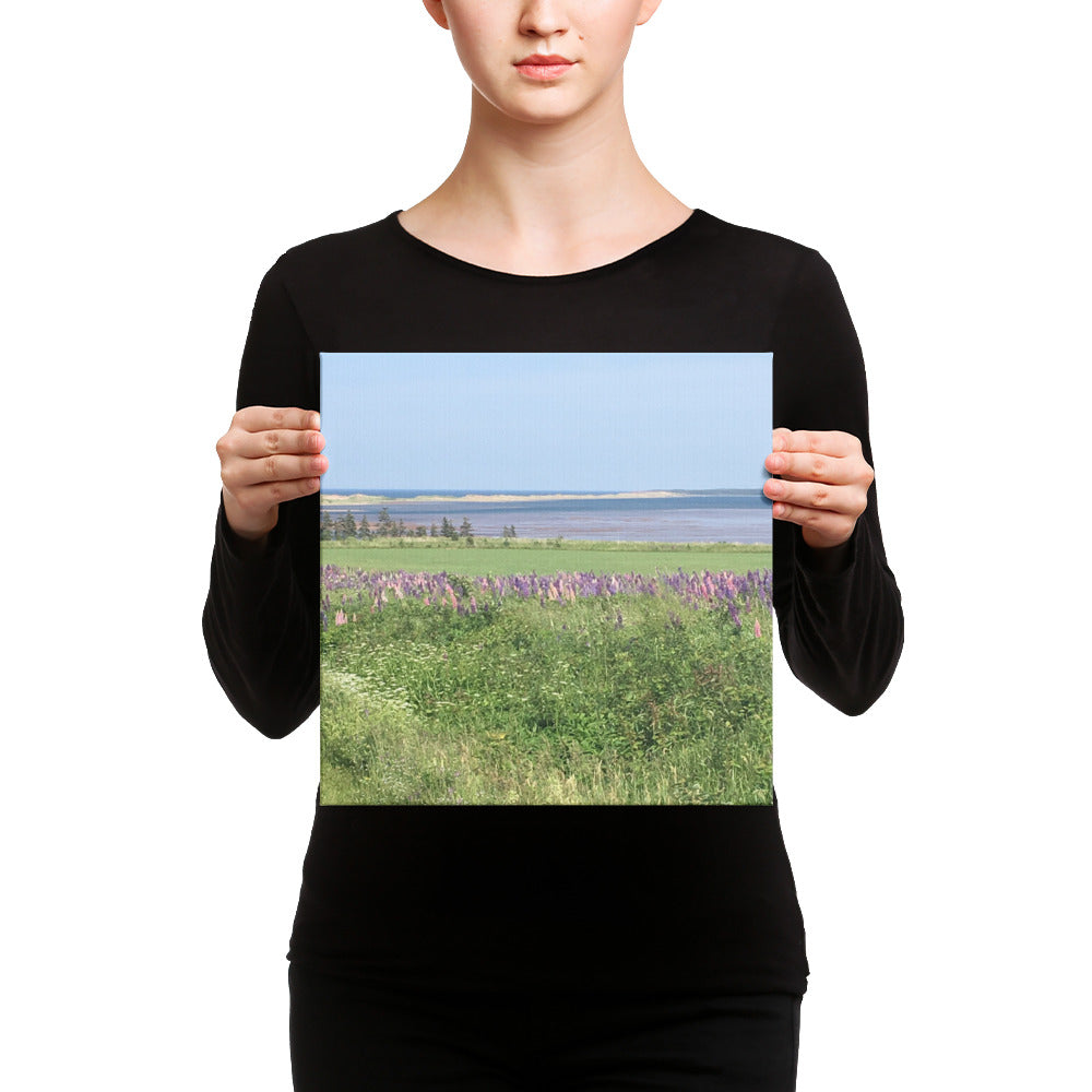 French River PEI with Peninsula Sand Dunes Canvas Print-Wall Art, Home Decor-Northern Treasure