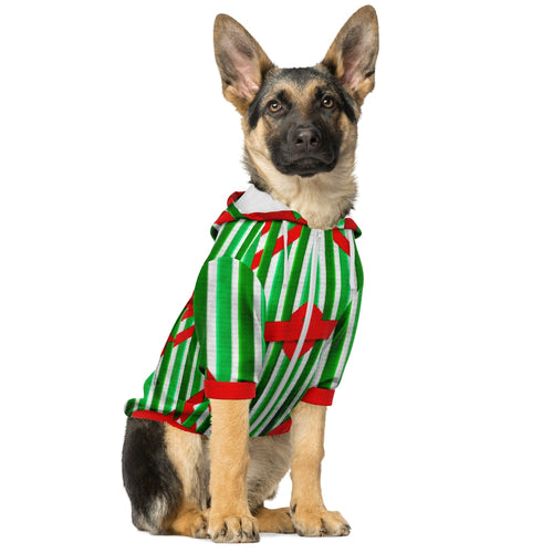 Christmas Dog Zip-up Hoodie-Athletic Dog Zip-Up Hoodie - AOP, apparel-Northern Treasure
