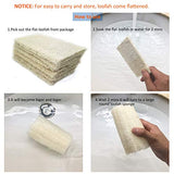 Maymiihome 100% Nature Large (5 Inch Length) Organic Loofahs Loofah Spa Exfoliating Scrubber Natural Luffa Body Wash Sponge Remove Dead Skin Made Soap
