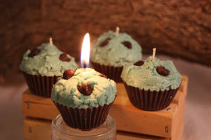 Cupcake Candles, Mini Mint-Chocolate Chip Cupcake Candle, Fake Food - Country Rich Creations, LLC