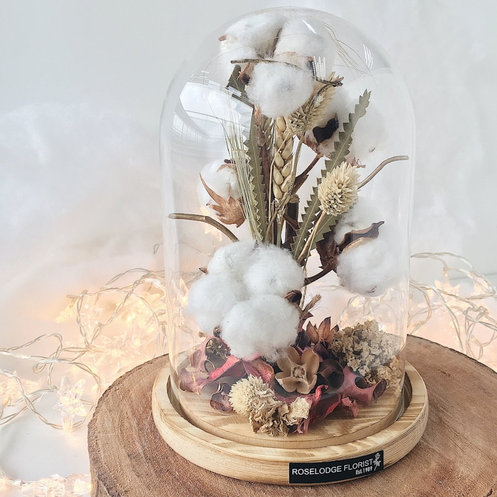 Cotton Fluff in Bell Jar