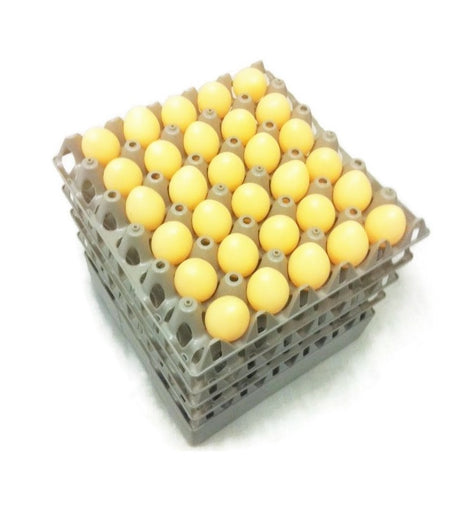 Egg Trays - 20 x Grey